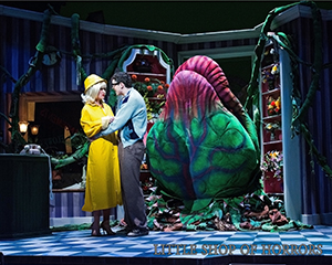 Little Shop of Horrors, LTR
